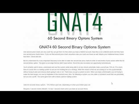 GNAT4 60 Second Binary Options System Review